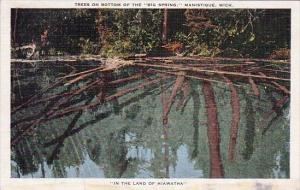 Trees On Bottom Of The Big Spring Manistique Michigan