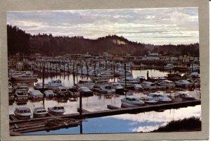 Postcard WA Ilwaco Port Sunset Columbia River Boats Harbor 2644N