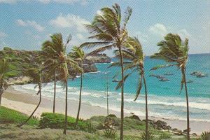 Barbados South Coast Beach