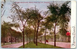 Chicago, Illinois Postcard GRAND BOULEVARD, North from 51st Street c1900s