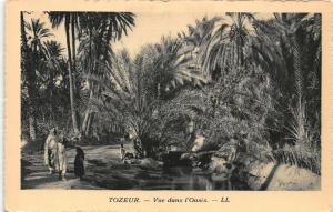 Tunisia Tozeur Vue dans l'Oasis Postcard