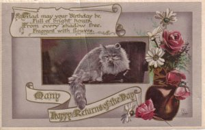 BIRTHDAY, 1920-30s; Cat perched, Vase with red roses & daisies, Happy Returns...