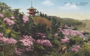 Sankei En Park Yokohama Floral Display Japanese Old Postcard