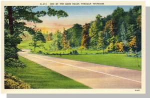 Tennessee/TN Postcard, One Of The Good Roads, Near Mint!