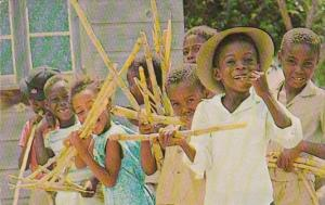 Barbados Children Enjoying Sticks Of Sugar Cane