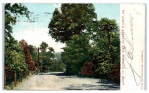 1907 Scene on National Pike, Fayette County, PA Postcard