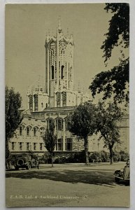 Old Divided Back Postcard Lithograph Aukland University, New Zealand Unposted