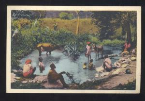 PORT AU PRINCE HAITI COWS IN WATER VINTAGE POSTCARD PORT-AU-PRINCE HAITI