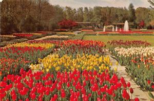 Netherlands Keukenhof Lisse, Botanical, Tulips, Fountains