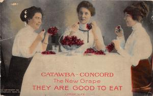 D63/ Advertising Postcard c1910 Little Silver New Jersey Lovett Catawba Grapes