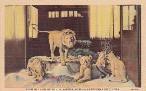 Roosevelt Lion Group U S National Museum Smithsonian Institution New York Cit...