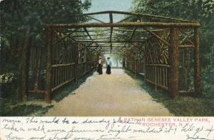 Genesee Valley Park Pathway, Rochester, New York - DB