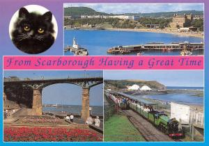 Postcard from Scarborough, Having a Great Time, Multiview, North Yorkshire #711