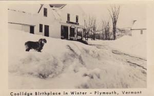 RP; Dog in snow , Coolidge Birthplace , PLYMOUTH , Vermont , 30-40s