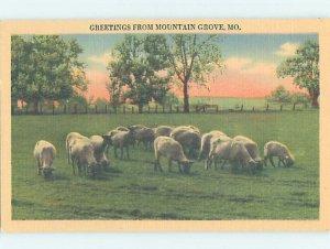 Linen ANIMALS GRAZING Mountain Grove Missouri MO AD4320