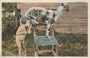CUBA, 1900-10s; A Cuban Kid, Child nursing from a goat