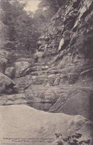 New York Plattie Clove Section Of Grand Canyon Albertype