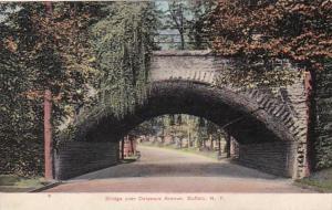 New York Buffalo Bridge Over Delaware Avenue