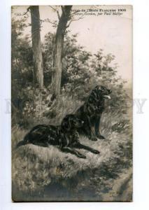 146562 HUNT Gordon Setter Dogs by MALHER Vintage SALON PC
