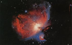 Orion Nebula (Astronomy)