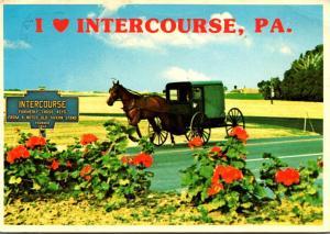Pennsylvania Intercourse Amish Family Carriage 1987