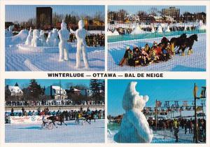 Canada Ottawa Winterlude Bal De Neige Snow Sculptures Horse Racing & Horse Pu...