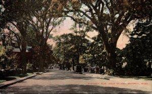 Massachusetts Beverly Hale Street The Historic Elm Tree