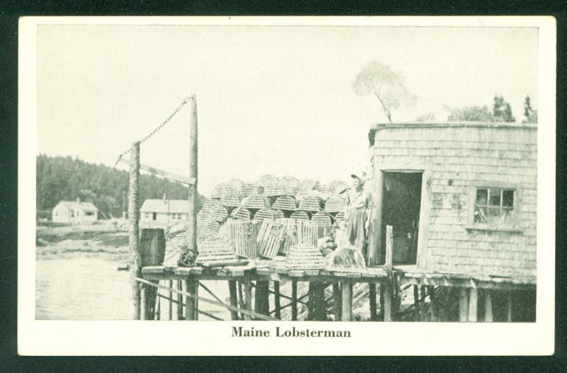 MAINE SCENE Lobsterman on Fishing Pier Lobster Traps Postcard