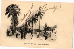 CPA Senegal-Saint Louis-Allée de Cocotiers (235376)