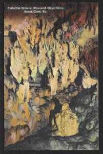 Stalactite Gallery Mammoth Onyx Cave Horse Cave Kentucky Unused c1938