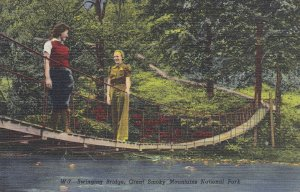 GREAT SMOKY MOUNTAINS NATIONAL PARK, NC/TN, 30-40s; Swinging Bridge