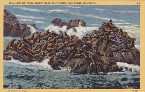 California San Francisco Seal Herd On Seal Rocks Near Cliff House
