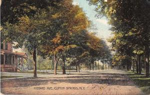 Clifton Springs New York scenic birds eye view Hibbard Ave antique pc Z22600