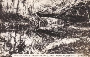 RP: Beaver Creek , Sparrow lake near KILWORTHY , Ontario , Canada , 1910-20s