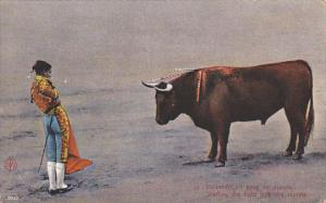 Mexico Starting The Bull Fight With The Muleta