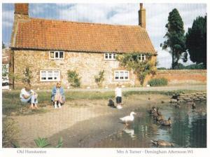 Children Feeding Swans at Old Hunstanton Farm Cottage Norfolk Postcard