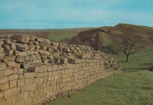Walltown Crags Roman Wall Northampton Rare Postcard