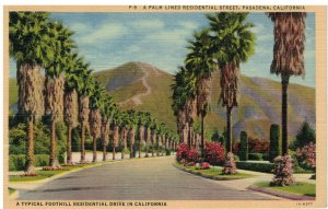 Postcard - A Palm Lined Residential Street, Pasadena, California