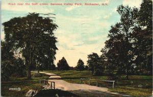 Rochester New York~Genesee Valley Park~Bridge & Road Past The Golf Links~1913