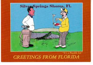 Post Card GREETINGS FROM FLORIDA Silver Springs Shores Its a PlayableLie
