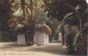 Jardins Landon, Biskra, Africa, PU-1913