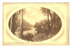 Scene in the Buller Gorge, New Zealand, 00-10s