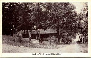 Indiana - ROAD TO WILD CAT TO BUNGALOW - VINTAGE - RPPC  Postcard