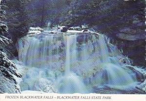 Frozen Blackwater Falls Blackwater Falls State Park Tucker County West Virginia