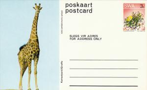 Animal - Giraffe, SWA 3cent, 1973