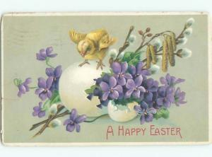 Divided-Back EASTER CHICK SCENE Cute Postcard AA0865