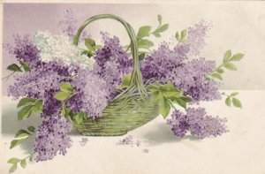 STILL-LIFE, 1900-10s; Green Basket of Purple & White Forget-Me-Not Flowers
