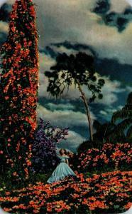 Florida Cypress Gardens Florida Flame Vine