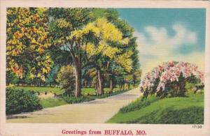 Missouri Greetings From Buffalo
