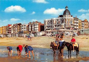Belgium Coxyde Beach and Dike, Plage et Digue Promenade Donkeys